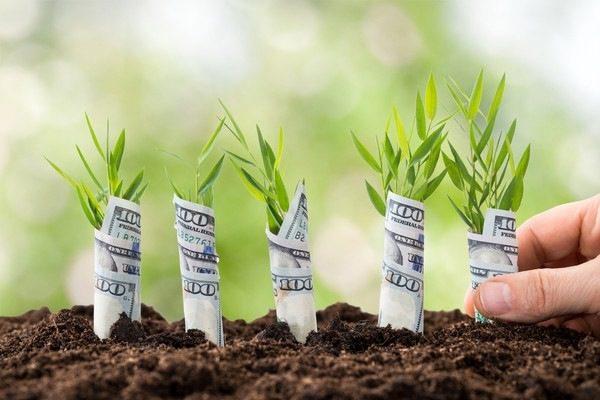 Як збільшити відсоткову ставку для депозиту та збільшити дохід