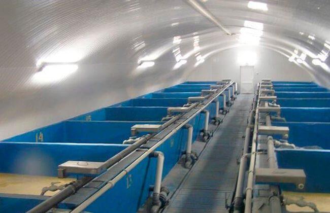 розведення раків в акваріумах бізнес