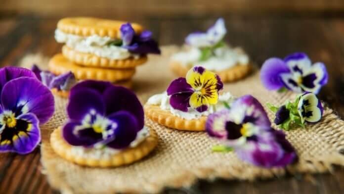 Їстівні квіти вирощування та збут